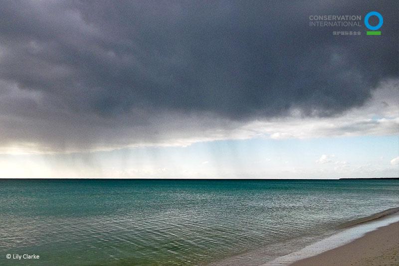乌云下的海洋